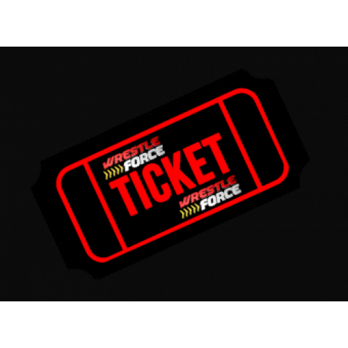 Adult ticket, November 17th